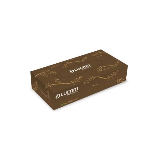 Salvrätikud kosmeetilised Lucart EcoNatural  2x,100lehte pk, 40pk kst - Pesumati