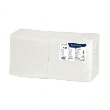 Grite Big Pack 250 salvrätik valge, 1x 24x24cm, 250tk/pk - Pesumati