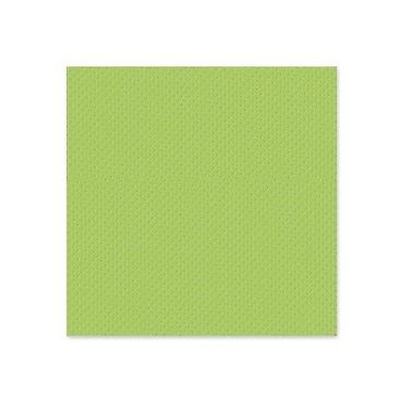 Salvrätik 2P 38x38 Star Apple green (Õuna roheline) 40tk/pk - Pesumati
